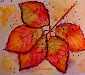 workshop herfstkleuren